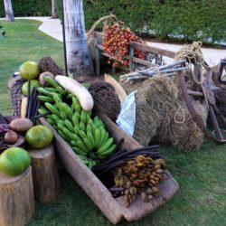 Optimized-Taste of Costa Rica (11)