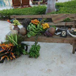 Optimized-Taste of Costa Rica (9)