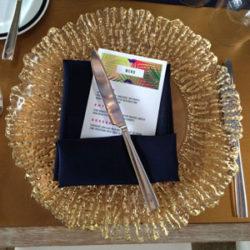Under-the-stars-award-dinner-(3)