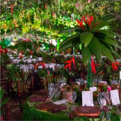 raintforest-ligera-10